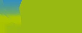 wings_logo-1
